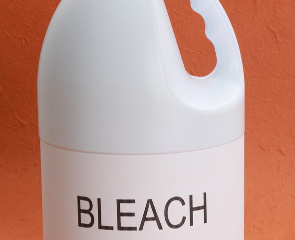 bleach for mold