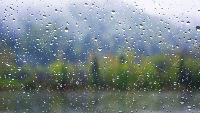 when it rains, it molds?